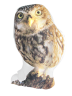 IMONO CUSHION STANDING OWL (INCLUDE PILLOW)